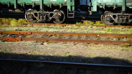 sağlamak : Cargo carriage of the railway train. Shooting in the movement. Stok Video
