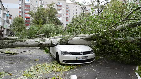 volkswagen : BERDYANSK, UKRAINE - OCTOBER 10, 2015: The car destroyed by a hurricane.