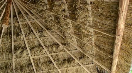 rundown : Canopy for hay storage. Stock Footage