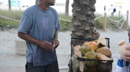 ivászat : MIAMI, USA - MARCH 26, 2014: coconut seller