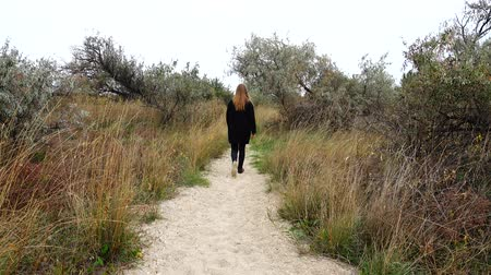village life : The girl goes on a footpath. Stock Footage