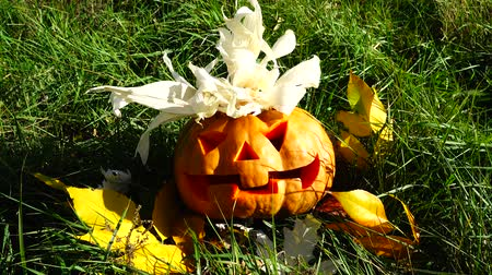 jack olantern : Spooky halloween pumpkin. Shooting in October. Stock Footage
