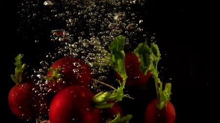 rabanete : Falling of a radish in water. Slow motion. Stock Footage