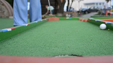 фарватер : Playing minigolf.