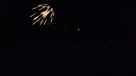 jiskry : Fireworks in the night sky.
