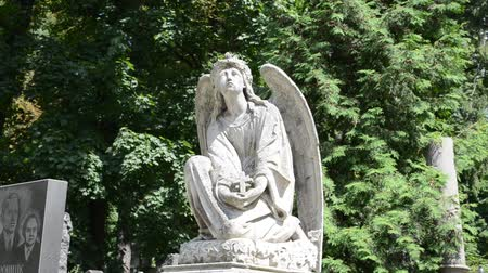 yerler : Angel with wings. Lviv, Ukraine. Lychakovsky cemetery (polish. Cmentarz ?? yczakowski) ??? the historical and memorial memorial estate (since 1991), one of the oldest cemeteries of Ukraine. Stok Video