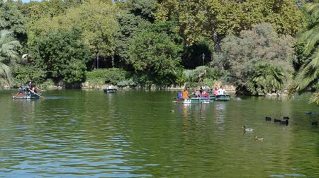 lew : Barcelona ciudadela park. People go boating. Wideo