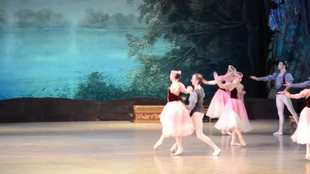 sukénka : DONETSK, UKRAINE - MARCH 25: Performance of Swan Lake on March 25, 2012 at the Donetsk National Academic Theater of the United Kingdom.