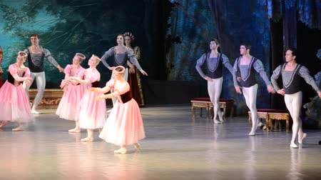 cisne : DONETSK, UKRAINE - MARCH 25: Performance of Swan Lake on March 25, 2012 at the Donetsk National Academic Theater of the United Kingdom.
