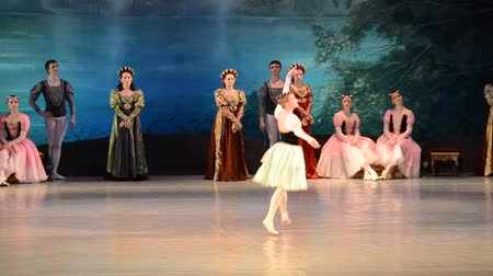 головной убор : DONETSK, UKRAINE - MARCH 25: Performance of Swan Lake on March 25, 2012 at the Donetsk National Academic Theater of the United Kingdom.