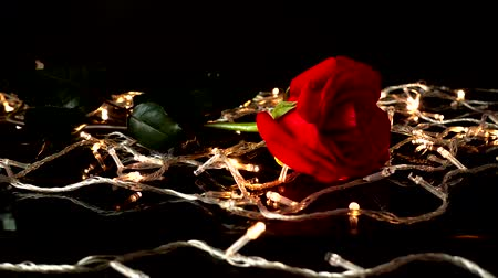 aroma : Roses and garlands on a black background.
