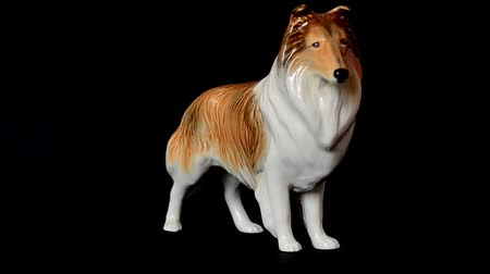 antikalar : Shooting of a dog Scottish collie. Shooting of a statuette.