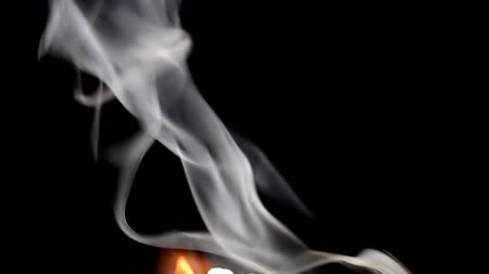balçık : Smoke on a black background. Gray smoke Stok Video