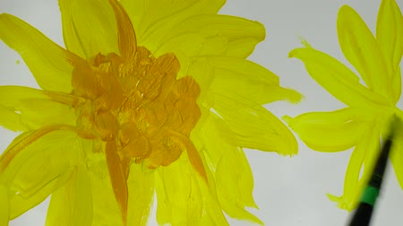 festett : Draw sunflowers. Time lapse. Stock mozgókép