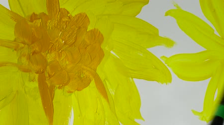 yellow flowers : Draw sunflowers. Time lapse. Stock Footage