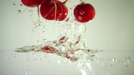 feixes : Fruits of a garden radish in water. Slow motion.