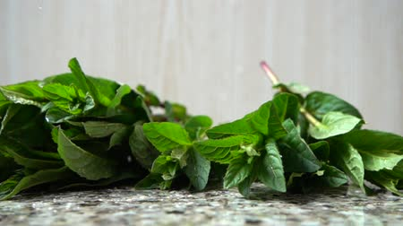 fodormenta : Falling of leaves of mint. Slow motion.