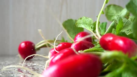rabanete : Falling of fruits of a radish. Slow motion.