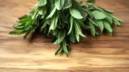 fodormenta : Falling leaves of mint on a cutting board. Slow motion. Stock mozgókép