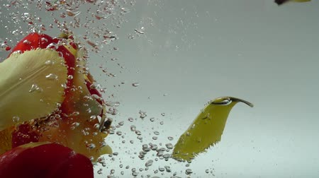 tulipan : Petals of tulips fall in water. Background. Slow motion.