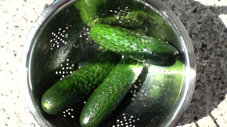 ズッキーニ : Tossing of cucumbers in a colander. Slow motion.