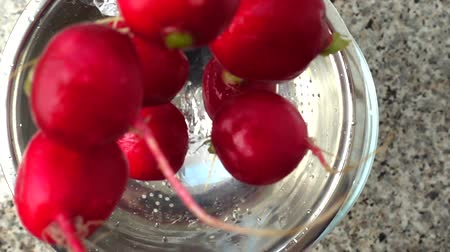 feixes : Tossing of a garden radish in a colander. Slow motion.
