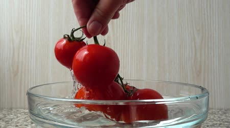 fejest ugrik : The cook gets tomatoes from a bowl with water. Slow motion.