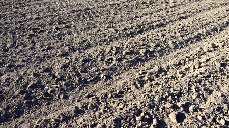 tillage : The agricultural field, shooting of the plowed earth.