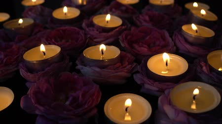 pink flowers : Roses and candles on a black background.