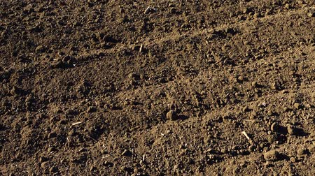plowed land : The agricultural field, shooting of the plowed earth. Shooting in rural areas.