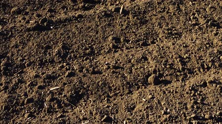tillage : The agricultural field, shooting of the plowed earth. Shooting in rural areas.