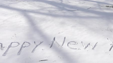frase : Inscription of happy new year on snow. Shooting in the winter.