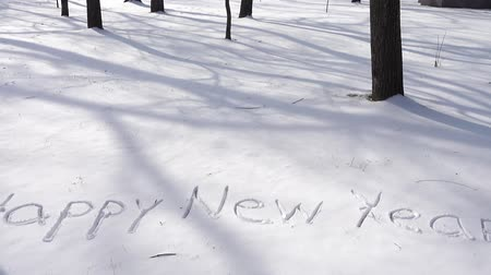 texto : Inscription of happy new year on snow. Shooting in the winter.