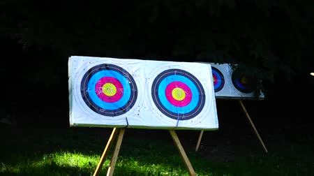 direkt : Archery The arrow hit the target. Slow motion.