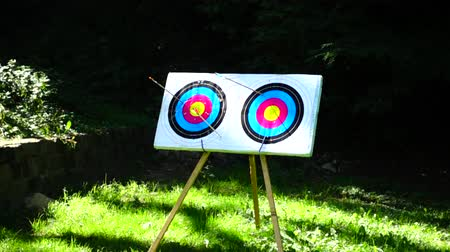 targeting : Archery The arrow hit the target. Slow motion.