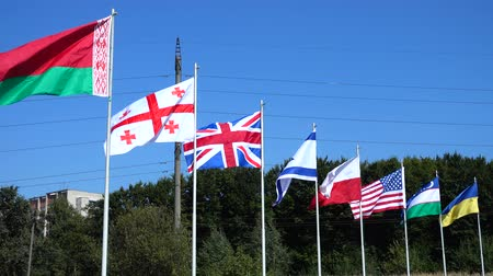 drapeau polonais : Flags of Belarus, Georgia, Great Britain, Israel, Poland, USA, Uzbekistan and Ukraine on flagpoles.
