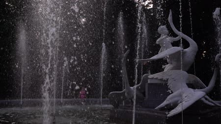 oies : Fountain in the evening park. Slow motion. Vidéos Libres De Droits