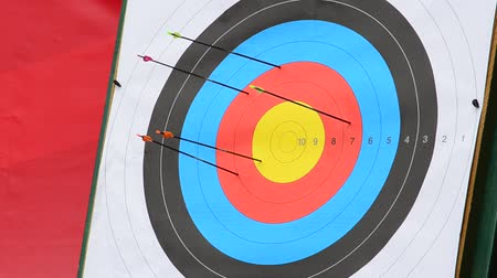 tripod shot : Targets for archery. Stock Footage