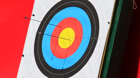 tiro com arco : Targets for archery. Stock Footage