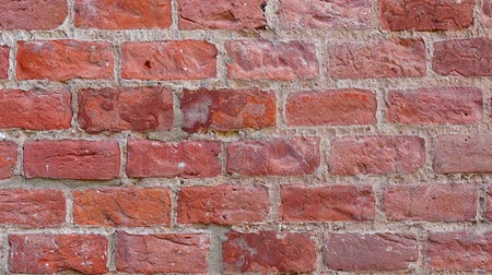brickwall : The wall is brick. Shooting background.
