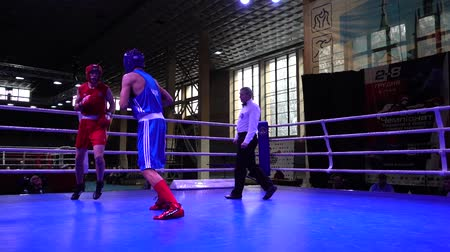 арена : LVIV, UKRAINE - DECEMBER 4, 2019: Ukrainian Youth Boxing Championships.