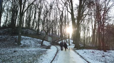 uliczka : LVIV, UKRAINE - JANUARY 26, 2020: Unknown people walk in the winter park. Wideo