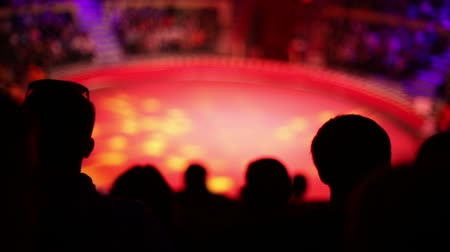 цирк : The silhouettes of the audience at the circus during the performance Стоковые видеозаписи