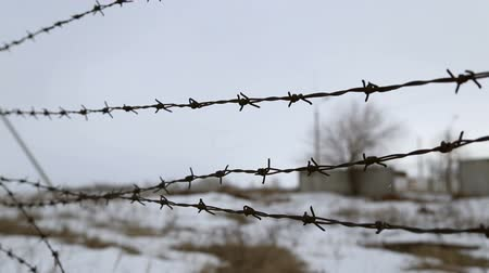 farpado : Barbed wire fence, wire sways in the wind