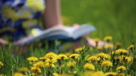 springtime : Girl reading a book sitting on a flower meadow with yellow dandelions
