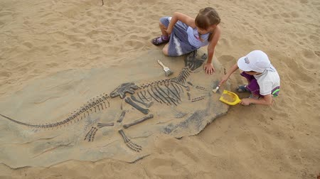 доисторический : Archaeological excavation of dinosaur bones, children playing in educational game Стоковые видеозаписи