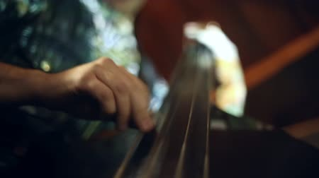 caz : The musician plays jazz music on the cello in the club