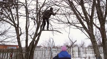 climbed : Man saws off the apple tree branch with a hacksaw, he climbed on ladders to the tree, the woman holds the ladder, timelaps Stock Footage