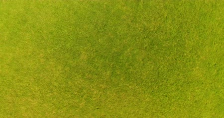Aerial drone shot flying out the green grass field Stock Footage