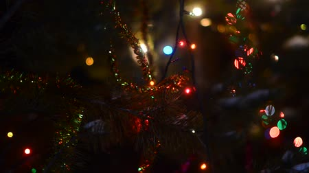 krans : Glowing garlands and festive colorful tinsel decorate spruce branches on the street shaking in the wind on new years eve. Stockvideo